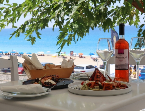 Monato Γεύσεις και Σουίτες στην παραλία Κάθισμα (βίντεο)